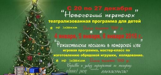 Рождественские псиделки в поморской избе 2015