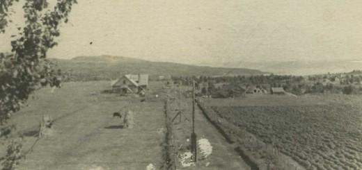 Белокаменка 1939 г. МОМ НВФФ 2881-9